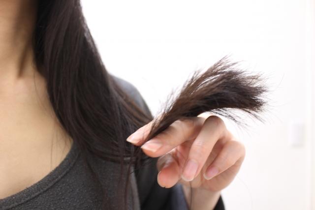 証明写真の髪型